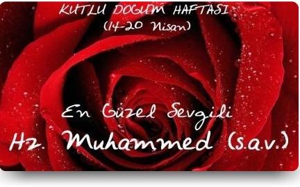 _yenimakale_kutlu_dogum_haftasi_2