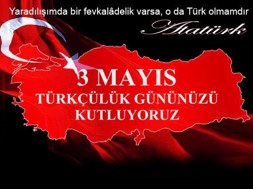 1DZ_turkculuk